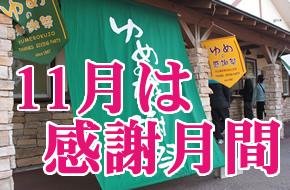 感謝月間 11月1日(土)~30日(日)