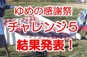 ゆめの感謝祭チャレンジ5<font color=