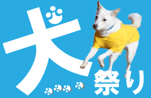 1月と2月は犬祭り!