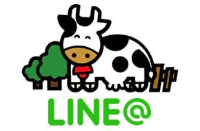 LINE@開始、もぉもぉスタンプ販売中!