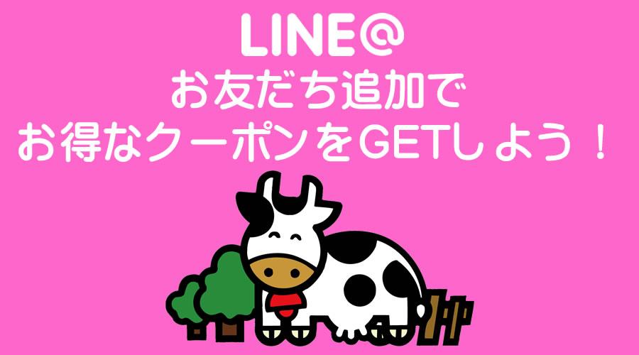 lineinfo