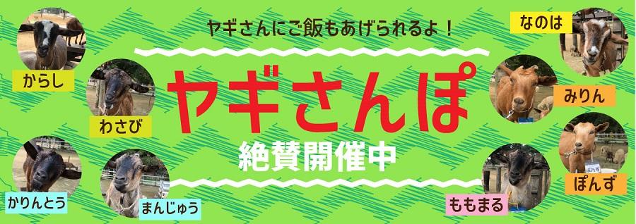 成田・銚子(北総)