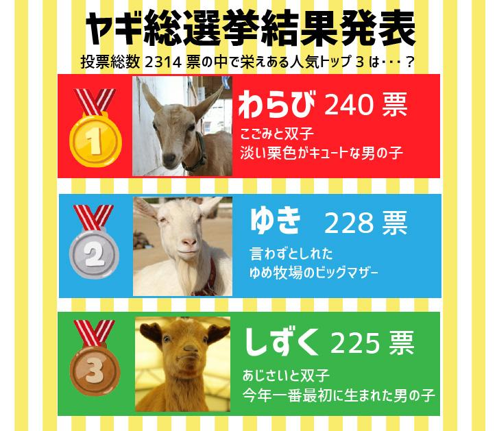 ヤギ総選挙結果