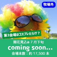 3coming-soon