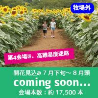 4coming-soon