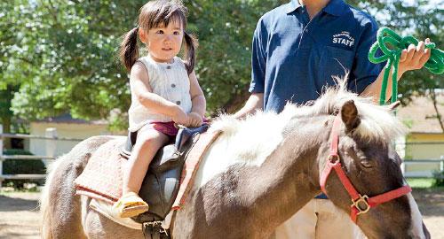 Horseback Riding/Pony Riding