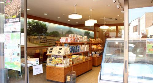 Narita Dream Farm Hanazakicho Store