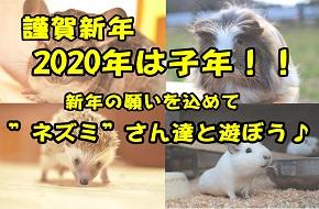 【謹賀新年】2020年は子年!ネズミさん達と遊ぼう♪