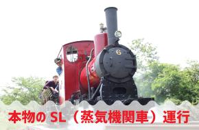 【5/29、30】本物のSL運行