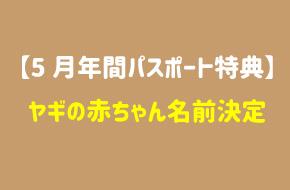 【5月年パス特典】ヤギの赤ちゃん名前決定