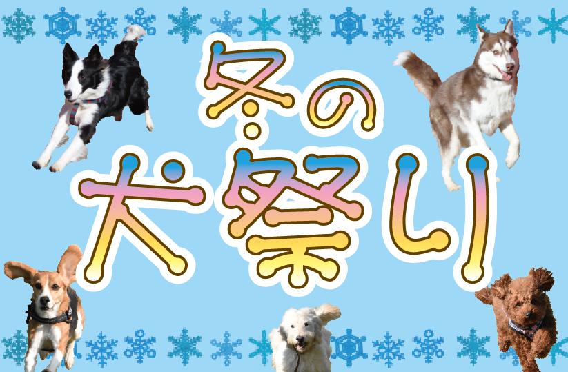 冬の犬祭り