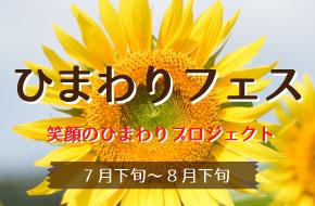 ひまわりフェス~笑顔のひまわりプロジェクト~